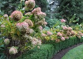 Small Picture Ideas for an Alluring Autumn Garden Garden Design