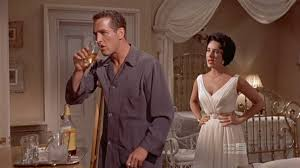 cat on a hot tin roof essay beautiful the cat on the hot tin roof  photo 2 of 8 cat on a hot tin roof essay beautiful the cat on the hot tin roof