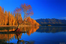 march to may are new zealandâ s autumn months while ratures are a little cooler than summer the weather can be excellent