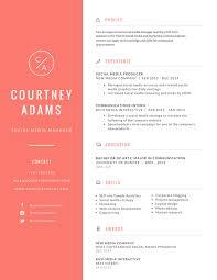 Professional Resume Online Template All Best Cv Resume Ideas