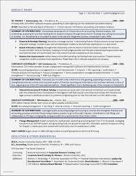 Sample Resume Directors Profile Template Elegant Board Of Directors