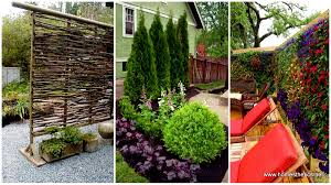 22 simply beautiful low budget privacy screens for your backyard for create privacy in your yard