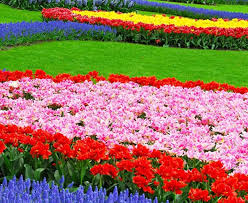 flowergardens02