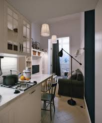 Narrow Kitchen Narrow Modern Kitchen Interior Design Ideas