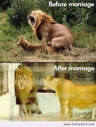 Αποτέλεσμα εικόνας για πριν τον γαμο μετα τον γαμο