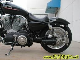 chopping rear fender the sportster and buell motorcycle forum