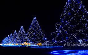 christmas tree lighting ideas. beautiful blue christmas tree lighting decoration ideas