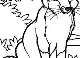 Immagini Animali Da Disegnare Playingwithfirekitchencom
