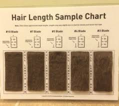 Shave Blade Sample Chart For Grooming Meshitzu Dog