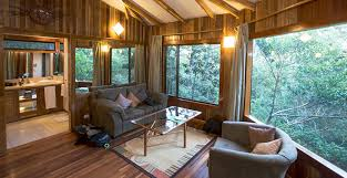 Cool Tree Houses To Stay And Eat At In Costa Rica  The Tiny Treehouse Monteverde Costa Rica