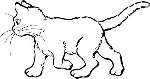Kitty Cat Coloring Page Kitty Cat Coloring Pages Page To Print