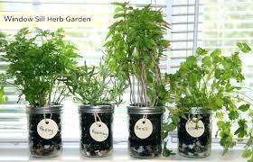 window herb planter windowsill herb planter kitchen window herb garden windows windowsill herb garden designs garden window herb planter
