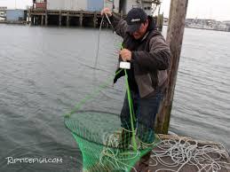crab trap harness