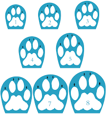 All Dog Boots Sizing Charts Edesign Pro Company