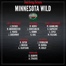 2020 Vision What The Minnesota Wild Roster Will Look Like