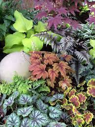 Small Picture 679 best Shade and small garden2 images on Pinterest Shade