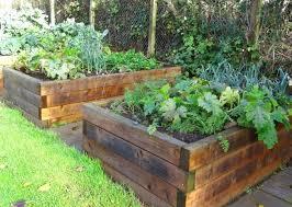lumber for raised beds plastic garden bed lumber for raised beds best wood farmstead cedar garden beds lumber for