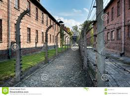 barbed wire fence concentration camp. Plain Concentration Download Barbed Wire Fence In Auschwitz II Concentration Camp Poland  Editorial Photo  Image Of Inside U