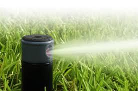 septic sprinkler head. Perfect Sprinkler Case Of Four Sprinklers Item 11003RCW4 SALE 7500 Quantity And Septic Sprinkler Head I