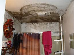 Mold In Bathroom Ceiling : How to Keep Out Mold on Bathroom ...