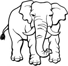 Small Picture Fresh Jungle Animals Coloring Pages 86 About Remodel Line Drawings