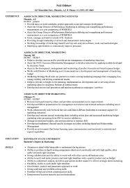 Associate Director Marketing Resume Samples Velvet Jobs