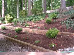 Small Picture Popular Landscaping Category For Landscape Timber Life Expectancy