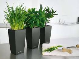 ... Planters, Indoor Pots For Plants Ceramic Flower Pots Three Black Large  Pot: awesome indoor ...