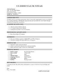 Template Curriculum Vitae Resume Samples Download Professional