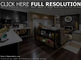 Hgtv Basement Designs Design A Basement Apartment Hgtv Style