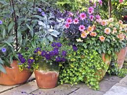 Small Picture Container Garden Design Ideas Uk The Garden Inspirations