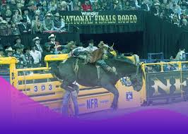 Nfr Live Stream National Finals Rodeo 2019 Live Online