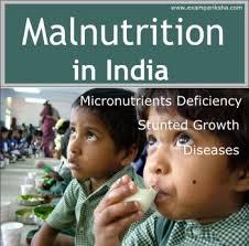 malnutrition essay malnutrition essay malnutrition in children essay examples sample essays