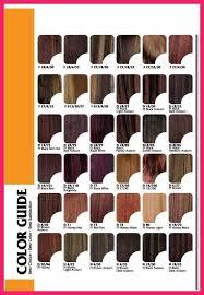 Redken Color Fusion Color Chart Redken Color Fusion Chart Bio Letter Format