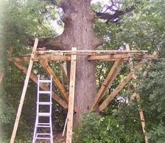 Image Easy To Make How To Build Tree House Yourself Homesthetics Partial Build Tree Houses By Tree Top Builders