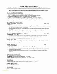 Professional Resume And Cover Letter Writing Services Or Sample