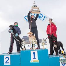 2017 FRK puppies!!! Aaron, Adrian and... - Fox Racing Kennels