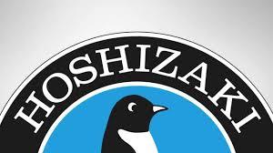 hoshizaki ice types making the right choice hoshizaki ice types making the right choice