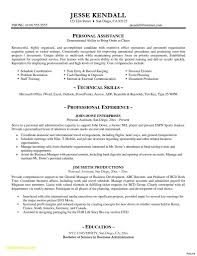 Professional Cv Template Word Download Download Template Cv Word Examples Free Resume Templates Word Sample