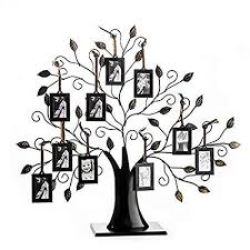Tree Design Amazon Com Klikel Family Tree Picture Frame Display With 10