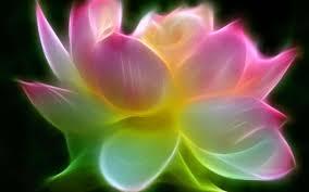 Uncategorized Neon Colored Flowers 5d neon flowers pro google play store  revenue download phone