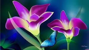 tropical flowers desktop wallpapers