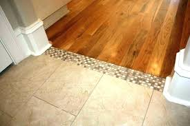 laminate transition strip carpet tile to strips threshold popular how install a transiti