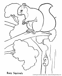 Small Picture Wild Animal Coloring Pages Tree squirrels Coloring Page and Kids