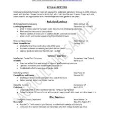 Fantastic Resume New Zealand Example Ideas Entry Level Resume
