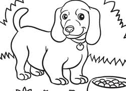 Small Picture Puppy Coloring Pages Printables Educationcom