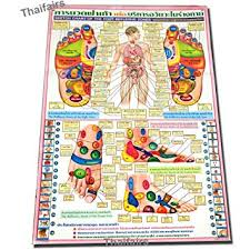 Poster Sketch Chart Of The Foot Reflexive Zones By Traditional Thai Foot Massage Reflexology