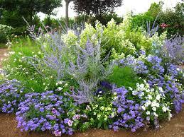 Avoir Un Jardin Fleuri Toute L Ann E Sans Connaissance
