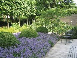 Small Picture 118 best Contemporary garden images on Pinterest Landscaping