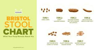 Type 6 Stool Bristol Stool Chart Type 6 Every Day Type 6